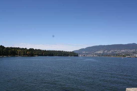 Stanley Park: Beautiful View