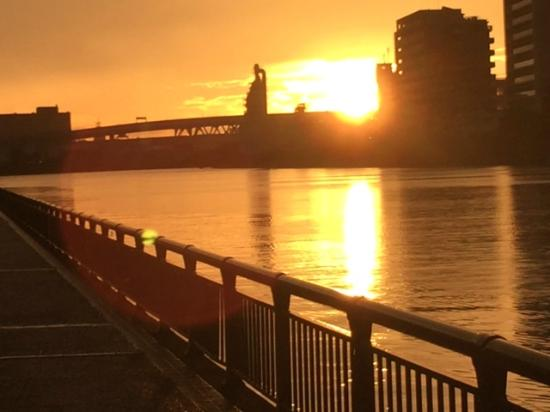 アリスの広場からの夕日 - Picture of Arakawa Yuen, Arakawa - TripAdvisor
