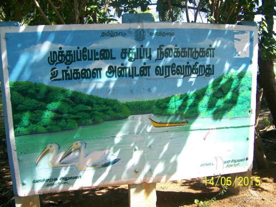 Thiruvarur, Indien: Lagoon entrance.......