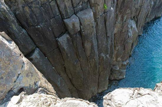 Tojinbo Cliff: 東尋坊