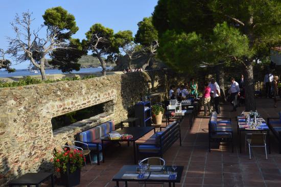 Le restaurant photo de les clos de paulilles port vendres tripadvisor - Restaurant le france port vendres ...