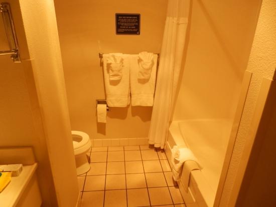 Charter Inn & Suites: Il bagno