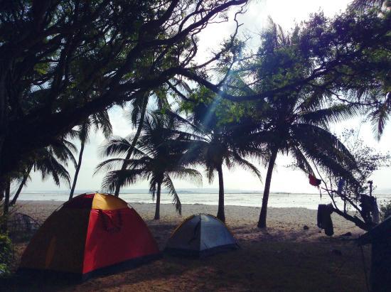 Twiga Lodge: camp view