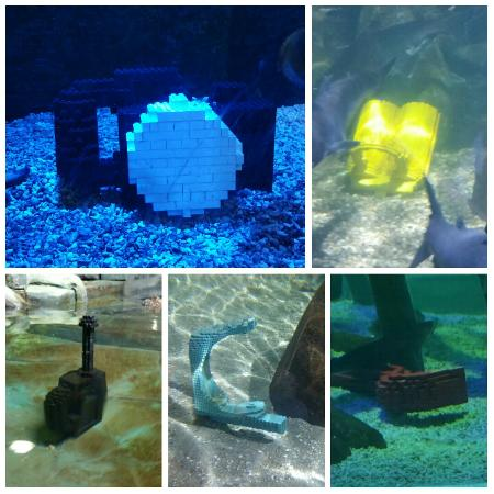 Hunstanton Sea Life Sanctuary: Sea Life Hunstanton - Lego hunt