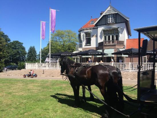 Rijs, Nederland: getlstd_property_photo