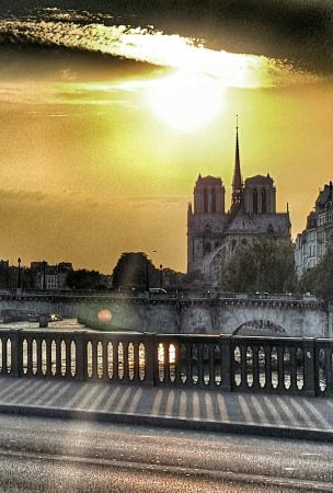 Notre Dame katedral: A voir de jour comme de nuit