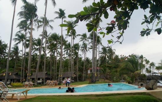 Kuting Reef: the pool amongst the coconut trees
