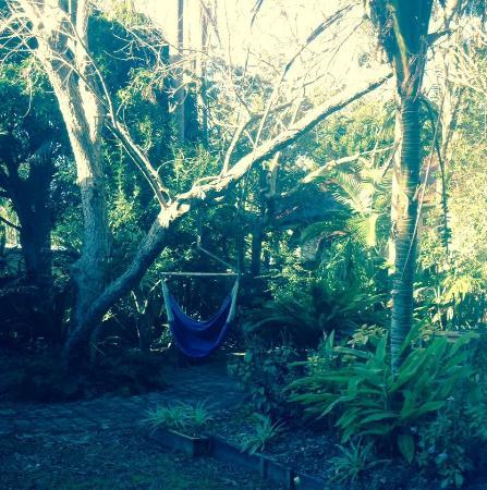 Arcadia House: Backyard