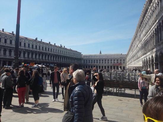 St. Mark's Square: photo1.jpg