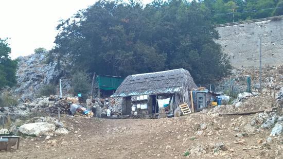 pastore palermo catania province - photo#24