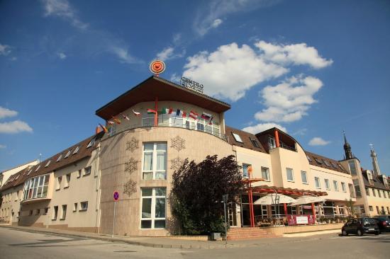 紅酒療養中心飯店