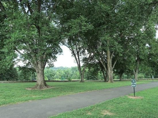 E. Carroll Joyner Park