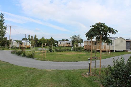 Camping Le Nid D'Ete : Vue emplacement et mobile home