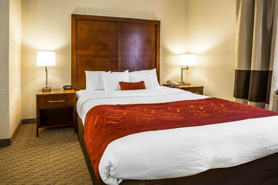 Comfort Suites Sugar Land: King Bed