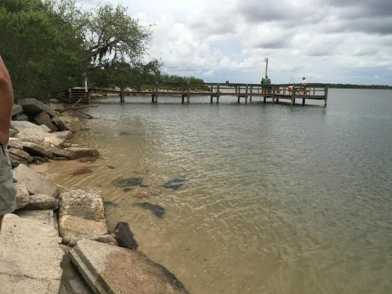 North Beach Camp Resort: Fishing pier
