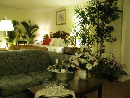 Bedford Plaza Hotel: my room