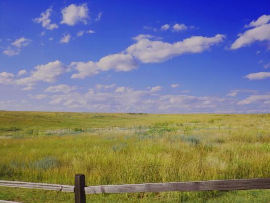 Santa Fe Trail Tracks: wagon tracks