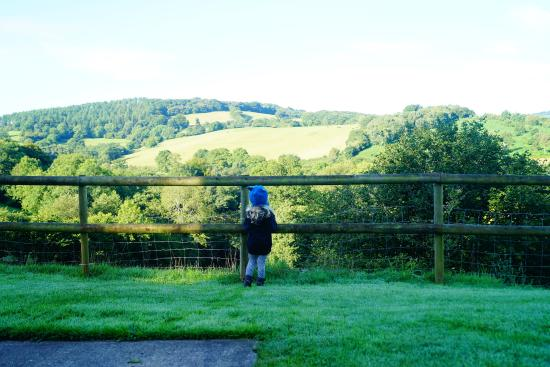 Earlswood, UK: daughter enjoying the view