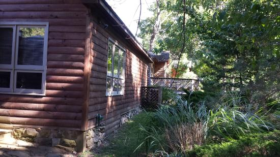 Good Brookside Cabins: Rear View Of Other Cabins From #4.
