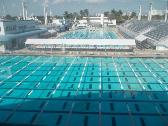 The Pools Picture Of International Swimming Hall Of Fame Fort Lauderdale Tripadvisor