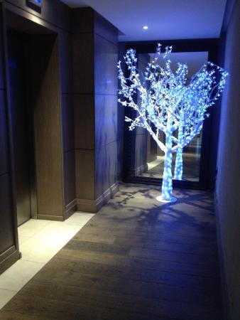 Macdonald Windsor Hotel: photo0.jpg
