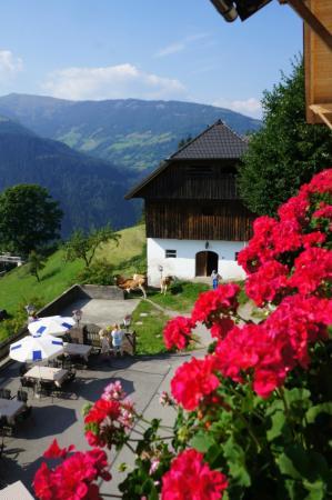 Alpengasthof Bergfried: uitzicht vanaf de kamer
