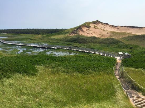 Saint Peters Bay, Kanada: Prince Edward Island Greenwich National Park trail to the parabolic moving dune is an outstandin
