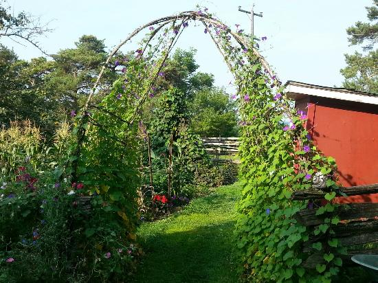Walkerton, Kanada: Pleasure Valley B&B
