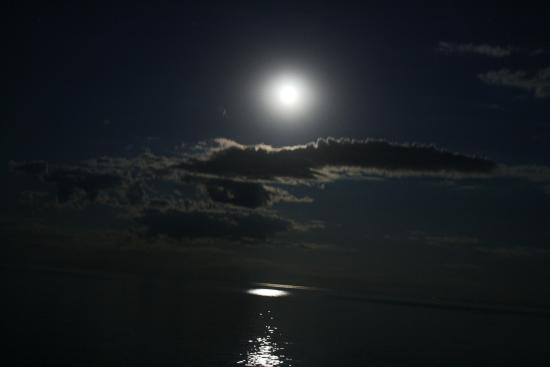 Gooseberry Park Cottages and Motel: Moon over Lake