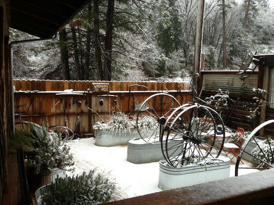 Colfax, Калифорния: Snow on the Garden