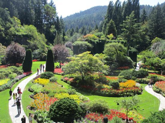 Bedste Afdeling Picture Of Butchart Gardens Central Saanich Tripadvisor