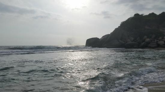 Camping Tayrona: sea