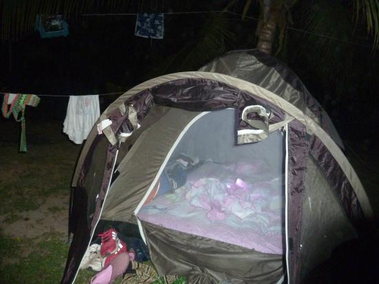 Camping Tayrona: tent