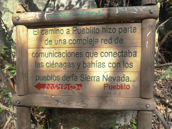 Camping Tayrona: road to pueblito