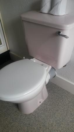Garve Country Hotel: pink loo with Matching white seat