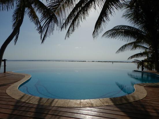 Turneffe Island, Belice: Infinity Pool