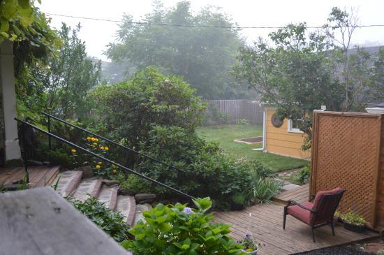 The Stella Rose B&B: backyard patio