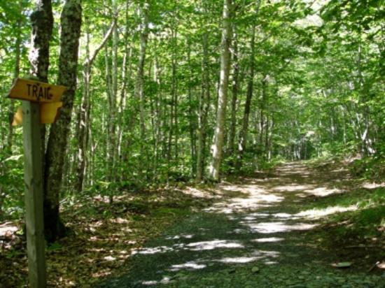 Bridgetown, Canada: Trail