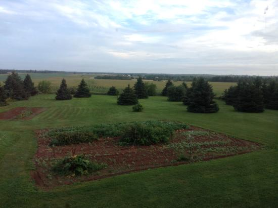 Prince County Bed & Breakfast: View from our room