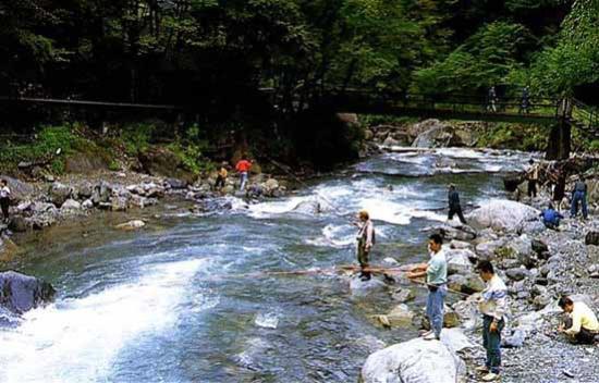 Nippara Keiryu Tsuriba Fishing Site