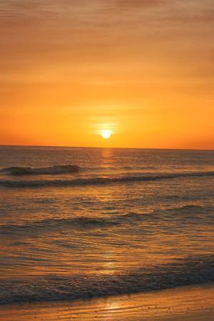 Hyatt Siesta Key Beach Resort, A Hyatt Residence Club: sunset on the beach