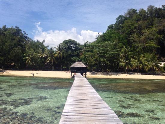 Kadidiri Paradise Dive Resort: photo1.jpg