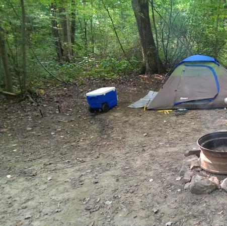 Butler, OH: Camp Site 12
