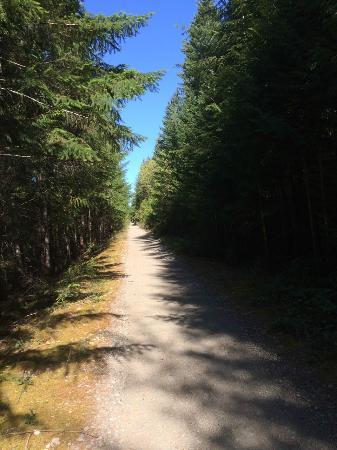 Cowichan Valley trail: Lake Cowichan Trail