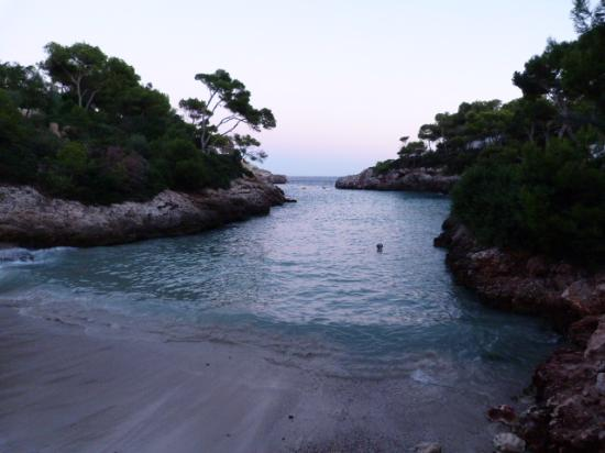 photo0.jpg - Picture of Cala d'Or Gardens, Cala d'Or - TripAdvisor