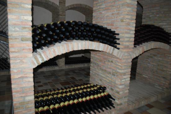 Orsogna, Ιταλία: Wine cellar