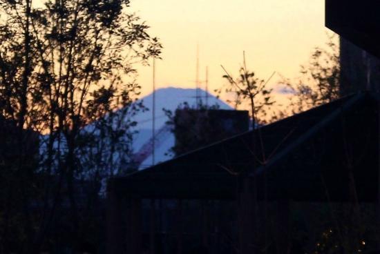 Grandtree Musashikosugi