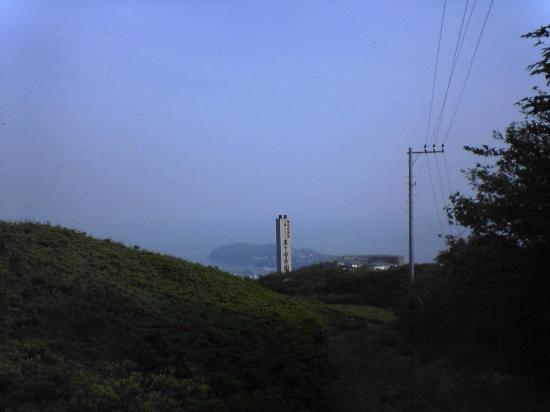 Hoshigayama Park Satsuki no sato : 星ケ山公園 さつきの郷