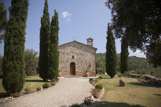 Villa San Crispolto detail