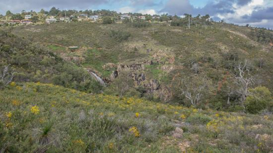 View of Lesmurdie from the other side of the valley - there are three kangaroos in this photo :p